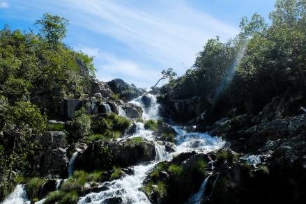 Sympatoche la cascade